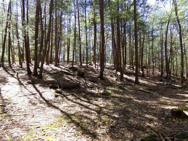 Lot 2 Cave Hill Rd, Leverett, MA 01054 (MLS #72679296) :: The Gillach Group