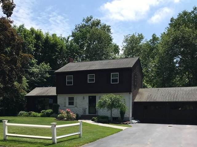 19 Hemlock Drive, Canton, MA 02021 (MLS #72681973) :: DNA Realty Group