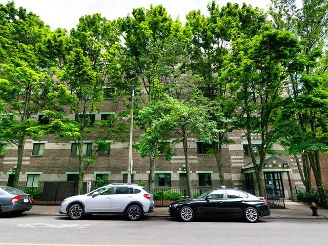 276 Chestnut Hill Ave #19, Boston, MA 02135 (MLS #72684240) :: Kinlin Grover Real Estate