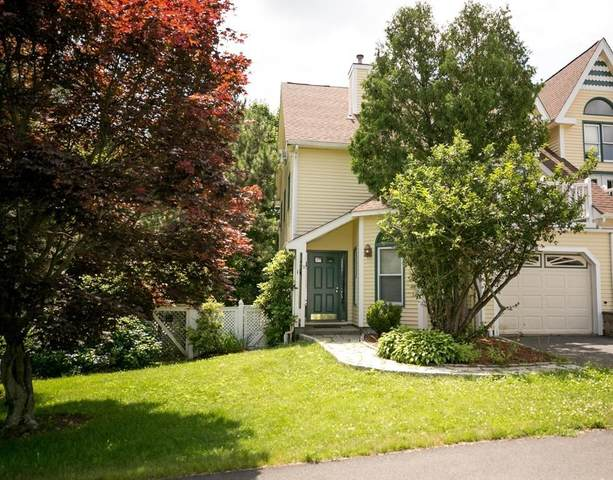 9 Blithewood Ter, Worcester, MA 01604 (MLS #72688826) :: The Duffy Home Selling Team