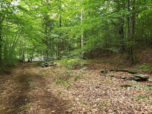 Lot 13 East River Rd, Chester, MA 01050 (MLS #72690617) :: EXIT Cape Realty
