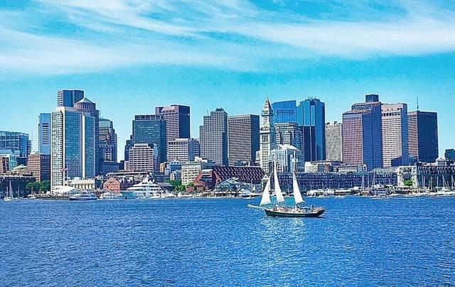 45 Lewis Street #314, Boston, MA 02128 (MLS #72706480) :: The Seyboth Team