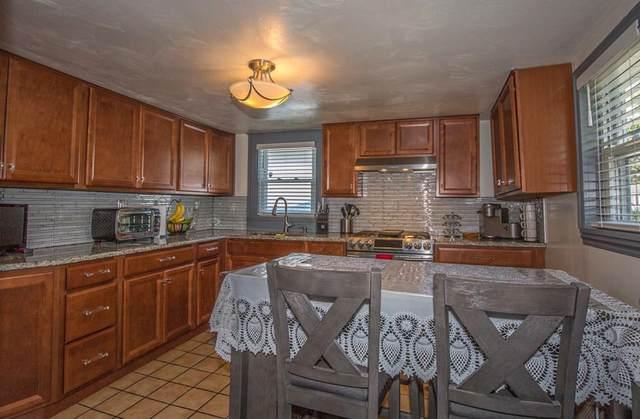 50 Brickett St, Springfield, MA 01119 (MLS #72710349) :: Charlesgate Realty Group