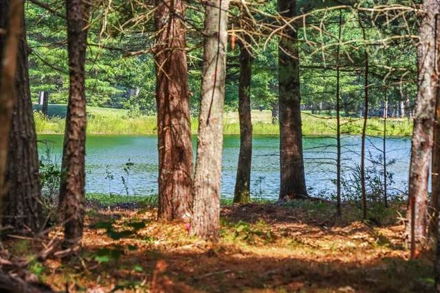 103 Ryecroft, Plymouth, MA 02360 (MLS #72716795) :: Welchman Real Estate Group