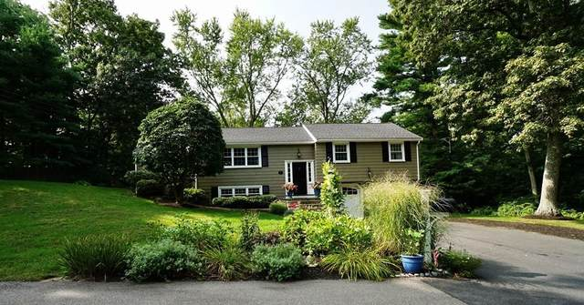 7 Arnold Drive, Medfield, MA 02052 (MLS #72728241) :: Trust Realty One