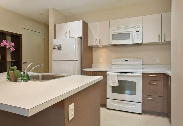 285 Columbus Ave #201, Boston, MA 02116 (MLS #72731284) :: The Gillach Group