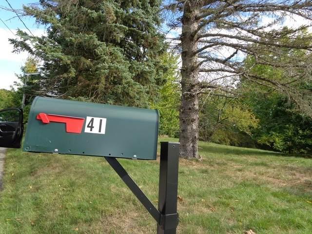 41 Grandview St., Chicopee, MA 01013 (MLS #72739129) :: Walker Residential Team
