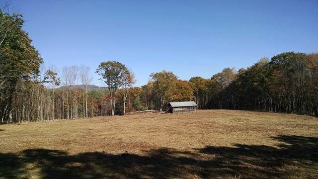 Lot A-2+3 Old Colony Road, Princeton, MA 01541 (MLS #72744329) :: The Duffy Home Selling Team