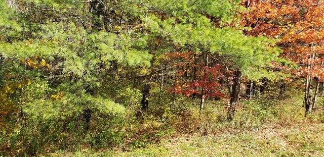 0 State Rd, Phillipston, MA 01331 (MLS #72746070) :: Spectrum Real Estate Consultants