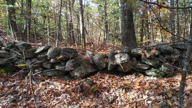 Lot 11 Shady Lane, Templeton, MA 01468 (MLS #72749870) :: The Gillach Group