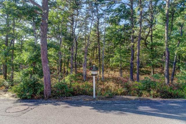 25 Dawn's Light, Plymouth, MA 02360 (MLS #72756092) :: revolv