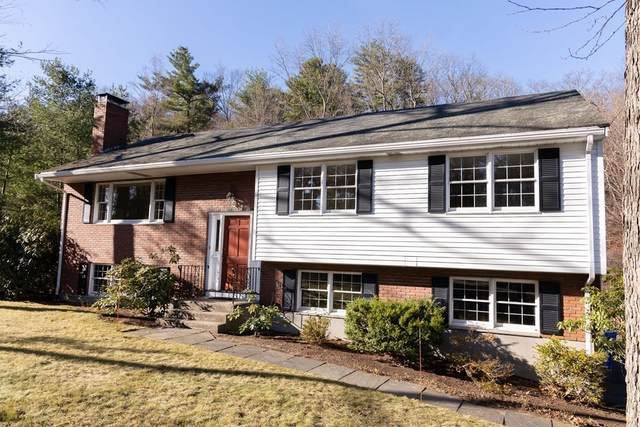 105 Lura Lane, Waltham, MA 02451 (MLS #72763847) :: Boylston Realty Group