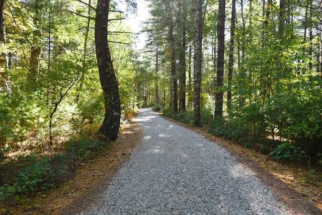 7 James Breech Way, Carver, MA 02330 (MLS #72765275) :: Conway Cityside
