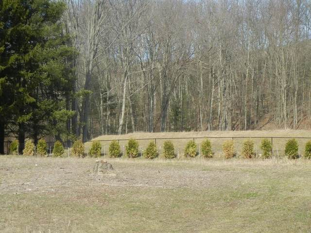 LOT 0 Miller St, Ludlow, MA 01056 (MLS #72774402) :: Exit Realty