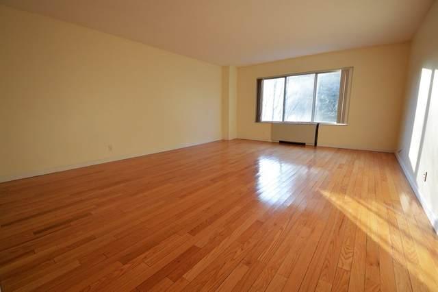 22 Chestnut Place 22-302, Brookline, MA 02455 (MLS #72778708) :: Boston Area Home Click