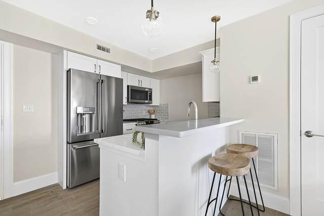 29 Ward Street #202, Boston, MA 02127 (MLS #72779122) :: Cheri Amour Real Estate Group