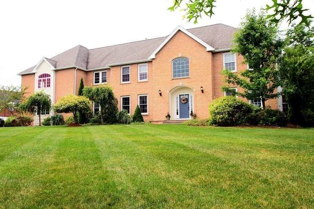 7 Cattail Lane, Sharon, MA 02067 (MLS #72780794) :: Westcott Properties