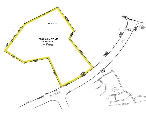 LOT 40 Trailside Road, Medfield, MA 02052 (MLS #72787790) :: Trust Realty One