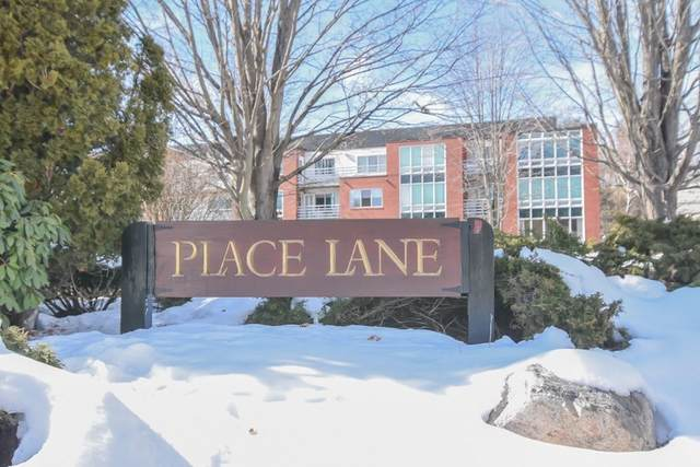 464 Place Lane #464, Woburn, MA 01801 (MLS #72790019) :: Exit Realty