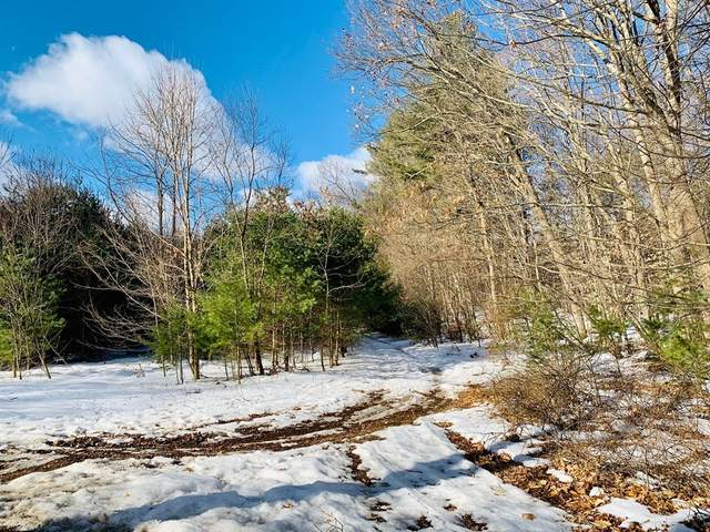 Lot 6 S Plain, Sunderland, MA 01375 (MLS #72790691) :: Cosmopolitan Real Estate Inc.