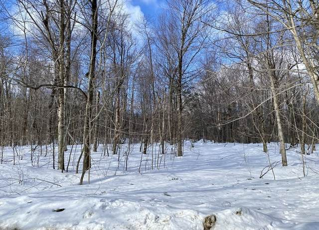 0 W Brown Road, Buckland, MA 01330 (MLS #72790882) :: The Gillach Group