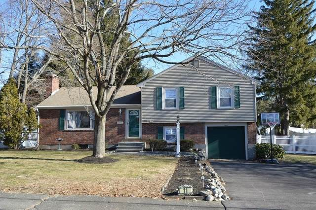 11 Castle Road, Millis, MA 02054 (MLS #72790933) :: Westcott Properties