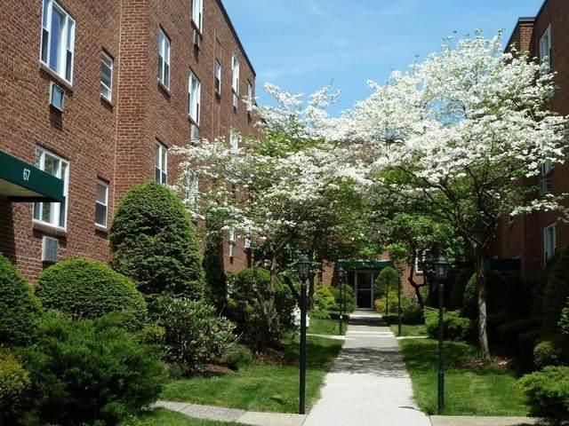 41 Colborne B2, Boston, MA 02135 (MLS #72794439) :: Welchman Real Estate Group