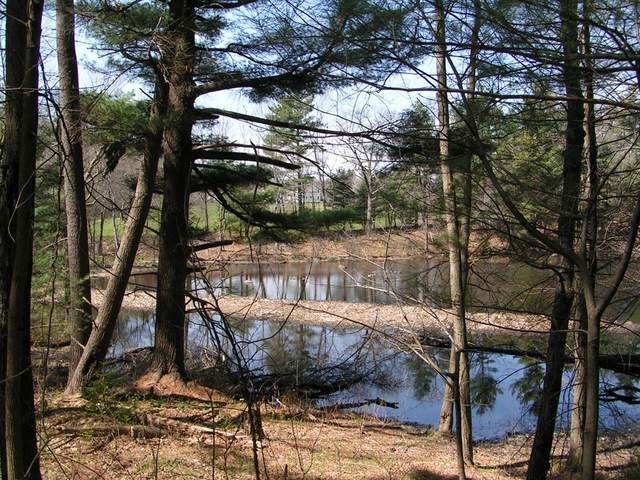 0 Ayer & Old Mill Road, Harvard, MA 01451 (MLS #72794981) :: DNA Realty Group