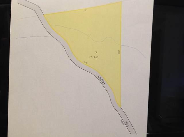 Lot 7 Pine Hill/Beech Hill Road, Orange, MA 01364 (MLS #72808558) :: Westcott Properties