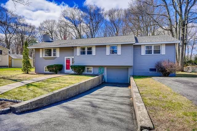 6 Princeton Rd, Burlington, MA 01803 (MLS #72809981) :: EXIT Realty