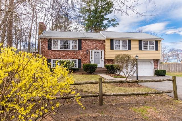 2 Malone Street, Dedham, MA 02026 (MLS #72810695) :: Spectrum Real Estate Consultants