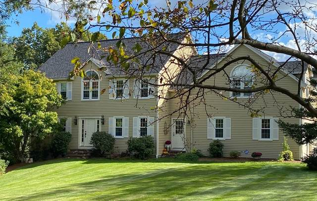 165 Spring Street, Wrentham, MA 02093 (MLS #72810971) :: DNA Realty Group