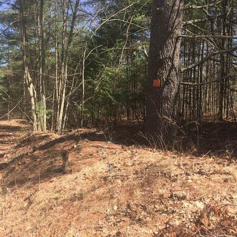 Lot 11 Town Farm Rd, Monson, MA 01057 (MLS #72812918) :: DNA Realty Group