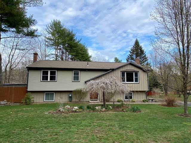 10 Hitching Post Rd, Amherst, MA 01002 (MLS #72814928) :: The Seyboth Team