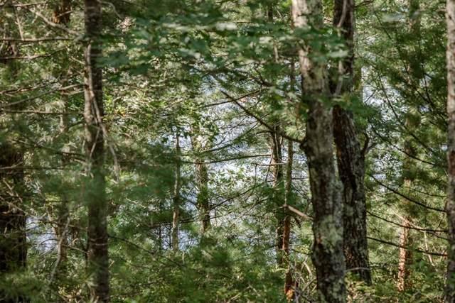 32 Talcott Pines, Plymouth, MA 02360 (MLS #72815677) :: Team Roso-RE/MAX Vantage