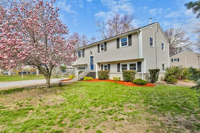 11 Parkview Ave, Salem, NH 03079 (MLS #72816006) :: EXIT Cape Realty