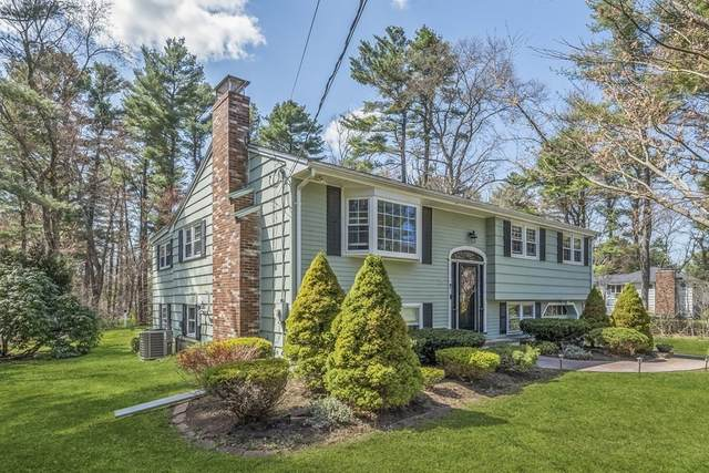 7 Old Coach Rd, Norfolk, MA 02056 (MLS #72816121) :: Re/Max Patriot Realty