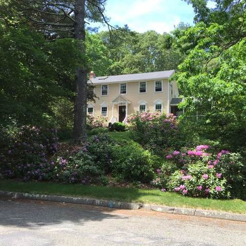4 Birch Bark Rd, Medway, MA 02053 (MLS #72822561) :: Welchman Real Estate Group