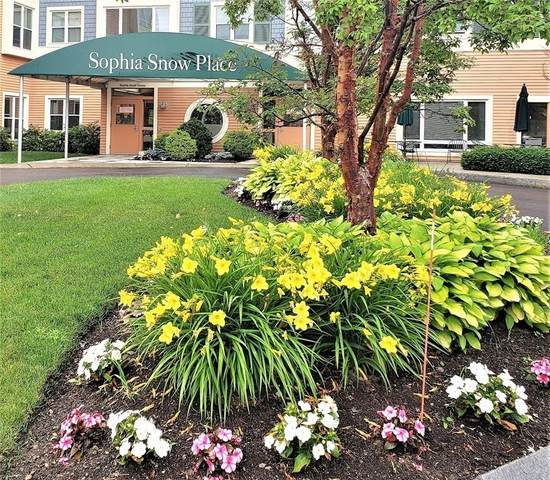 1205 Centre Street #208, Boston, MA 02132 (MLS #72822852) :: Conway Cityside