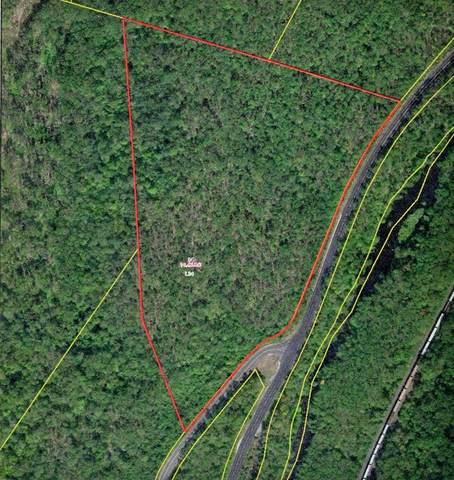 Lot 34 Old Warren Road, Palmer, MA 01069 (MLS #72824608) :: Westcott Properties