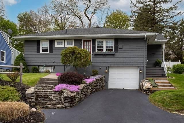 64 Francis Ave, Shrewsbury, MA 01545 (MLS #72826597) :: The Duffy Home Selling Team