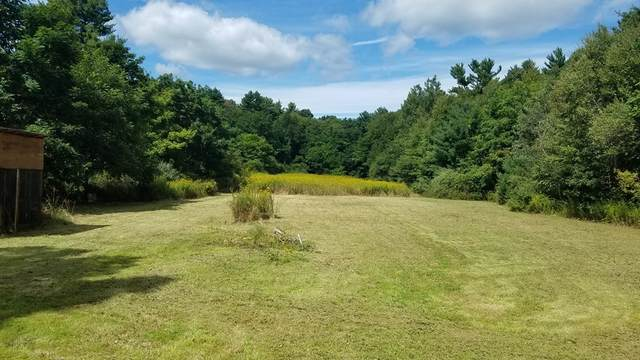 354 Henry St, Amherst, MA 01002 (MLS #72827029) :: Cape Cod and Islands Beach Properties