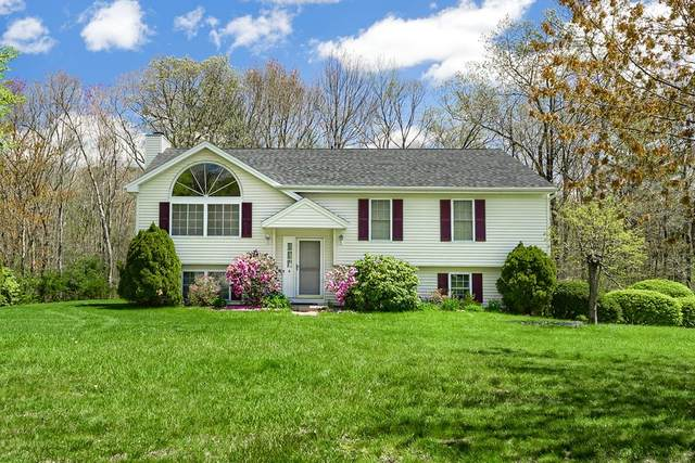 4 Wendy Place, Leicester, MA 01542 (MLS #72827288) :: Maloney Properties Real Estate Brokerage