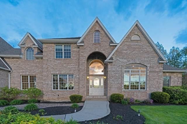 17 Valley View Drive, South Hadley, MA 01075 (MLS #72833561) :: Chart House Realtors