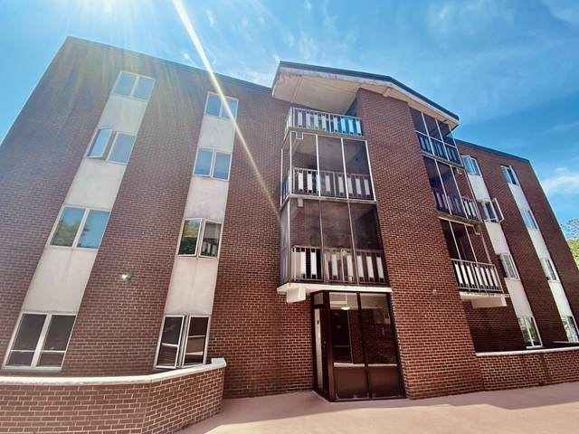 33 Lodgen Ct 1F, Malden, MA 02148 (MLS #72836290) :: Maloney Properties Real Estate Brokerage