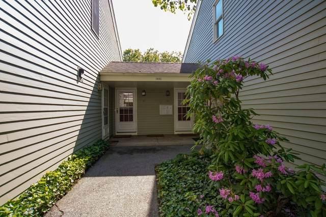 384 South Main #54, Providence, RI 02903 (MLS #72837458) :: The Ponte Group