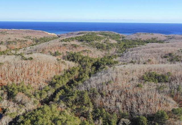 35A - 0 Higgins Hollow Road, Truro, MA 02666 (MLS #72838527) :: Home And Key Real Estate