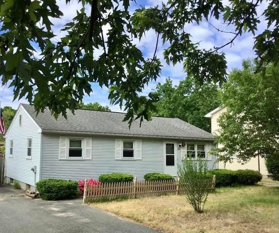 309 Sunrise Terrace, Springfield, MA 01119 (MLS #72839394) :: Spectrum Real Estate Consultants