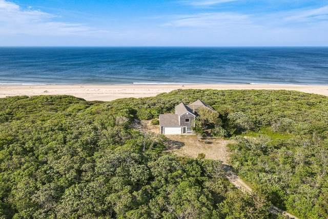 63 Head Of The Meadow Road, Truro, MA 02652 (MLS #72845921) :: The Seyboth Team