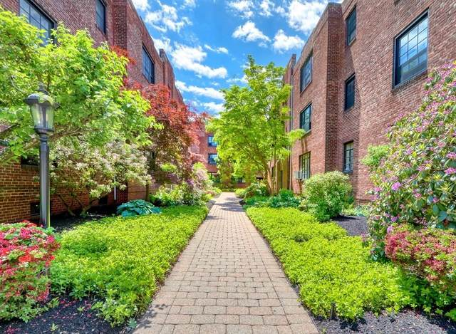 88A Marion St #2, Brookline, MA 02446 (MLS #72847343) :: Conway Cityside